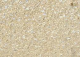 Losas de grandes dimensiones | Mosaics Planas image 18